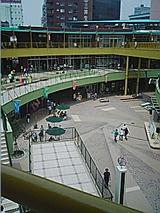 050619_1131~01.jpg
