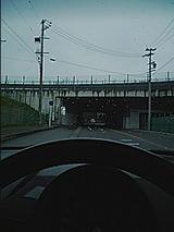 97dc445b.jpg