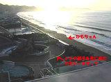 kamochan_200505040526